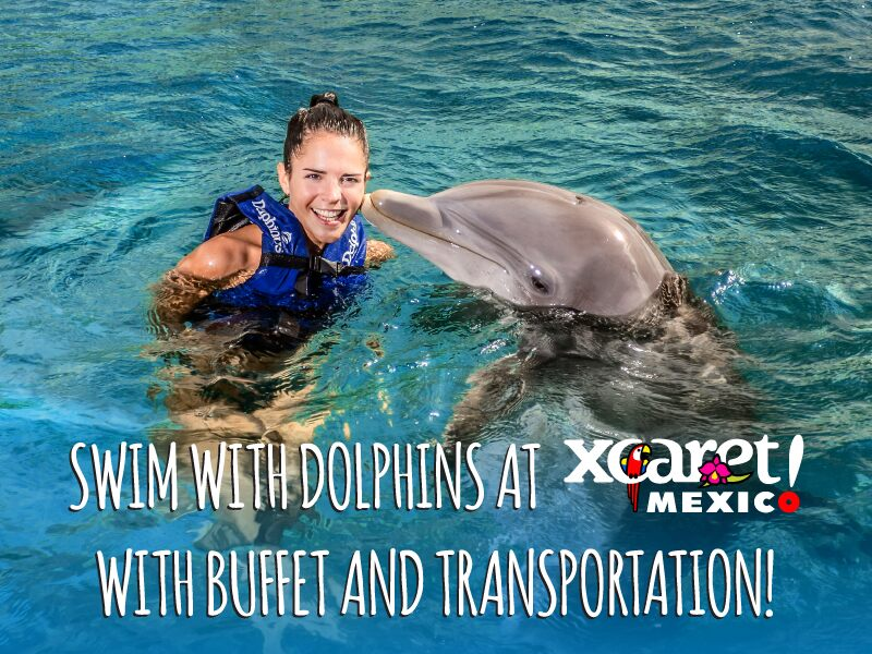swim with dolphins cancun xcaret